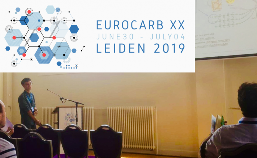 CARBAFIN presented at EUROCARB XX
