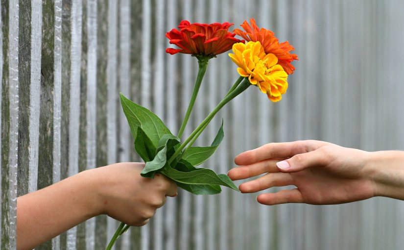 Hand giving flowers: metaphor for donation