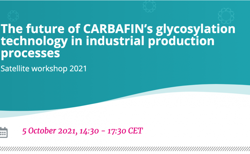 The future of CARBAFIN's glycosylation technology in industrial production processes Satellite workshop 2021